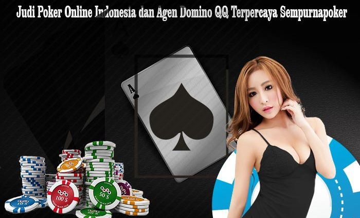 Boom Casino Wins Feb 2020's Best New Website