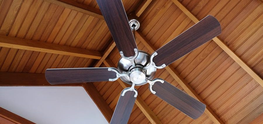 Decorative Ceiling Fan With Light Useless Or Alive?